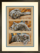 Counted Cross Stitch Max The Cat