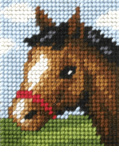 Embroidery Kit Friendly Foal